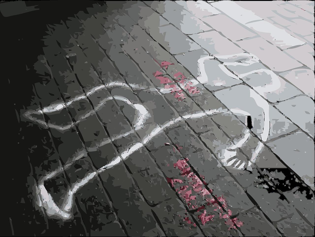 Índice de Datos sobre Homicidios: Resultados 2018
