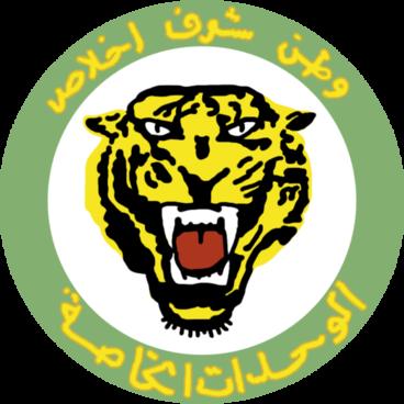 Las fuerzas del tigre: combatientes pro-Assad respaldados por Rusia