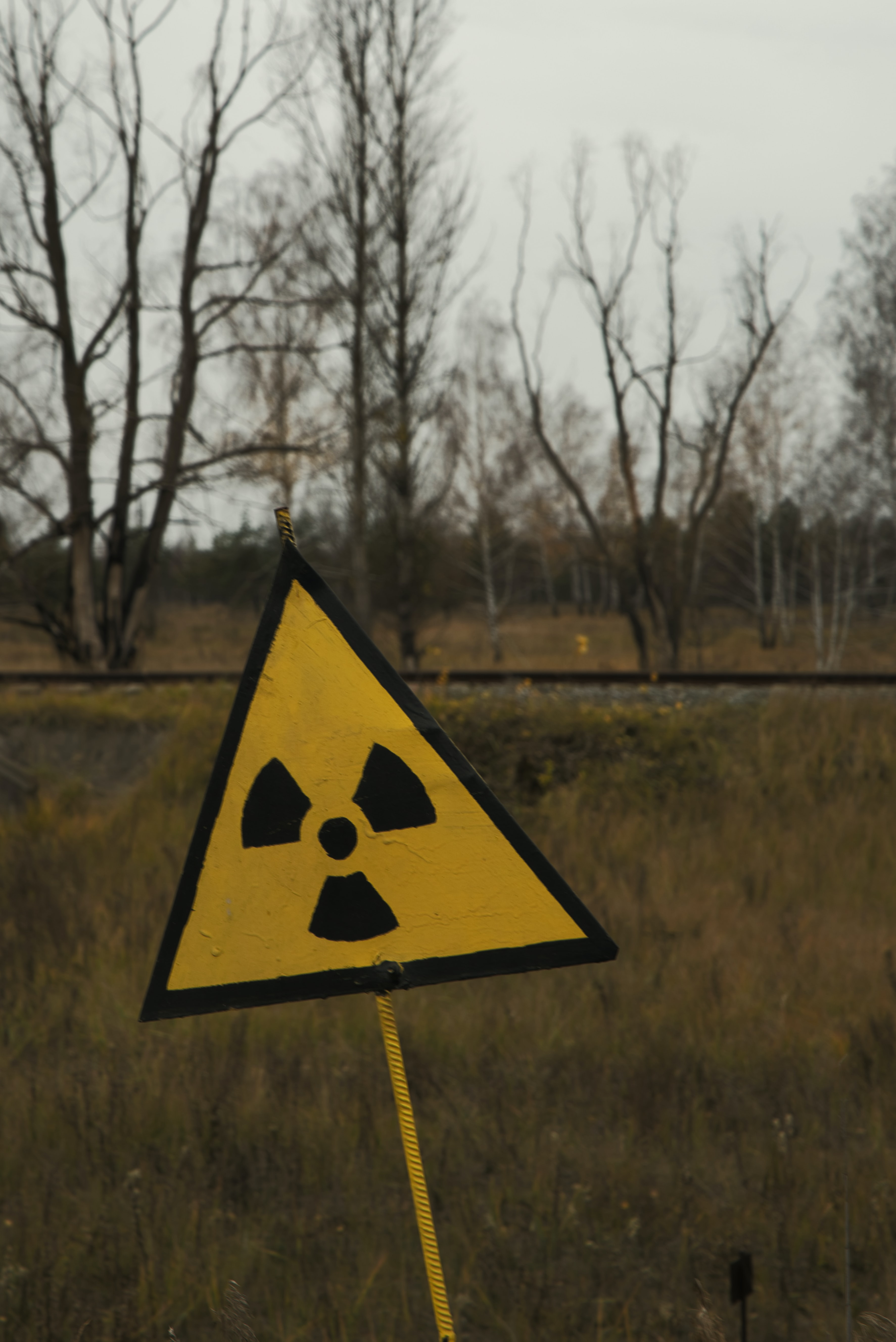 Weapons of Mass Destruction: Nuclear Terrorism and Nuclear Proliferation